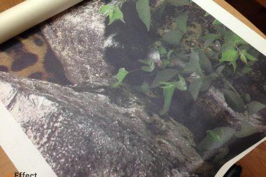 печать фотообоев под заказ киев